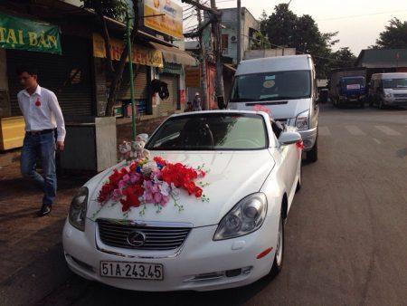 Lexus-mui-tran-02
