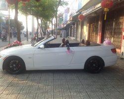Lexus-mui-tran-05