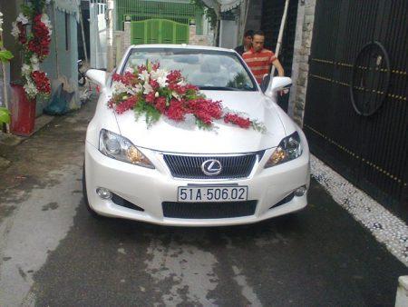 Lexus-mui-tran-07
