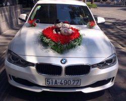 Xe-cuoi-BMW-03